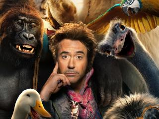 Dolittle Movie wallpaper