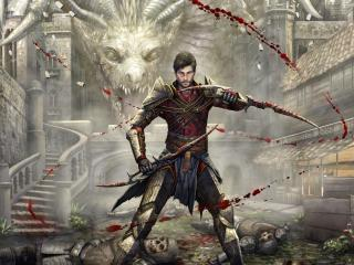 Dragon Age Killer Dragon wallpaper