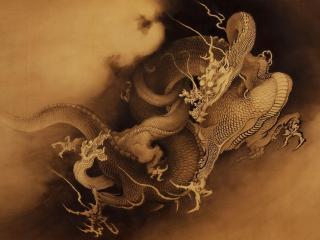 dragons, canines, battle wallpaper
