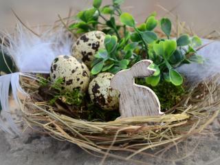 HD Wallpaper | Background Image easter, easter eggs, rabbit