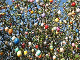 easter, eggs, shrub wallpaper