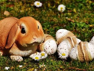 HD Wallpaper | Background Image easter, rabbit, eggs