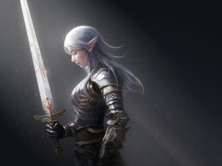 Elf Warrior wallpaper