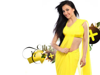 Elli Avram In Yellow Saree  wallpaper
