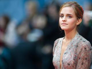 Emma Watson In Harry Porter Premiere  wallpaper