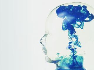 face, image, profile wallpaper