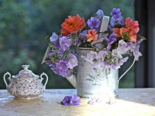 flowers, watering can, table wallpaper