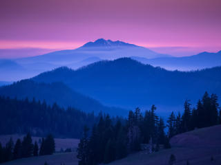 Forest Mountains Landscape wallpaper