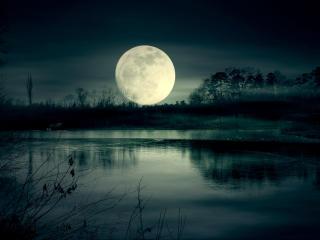 Full Moon Night Near Lake wallpaper