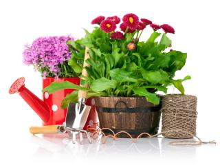gardening, items, sewing wallpaper