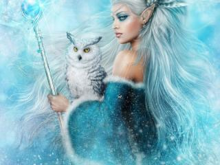 HD Wallpaper | Background Image girl, elf, owl