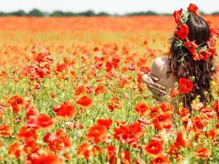 girl, field, flowers wallpaper
