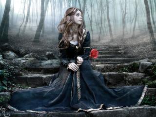 girl, rose, steps wallpaper