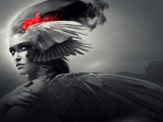 girl, wings, angel wallpaper