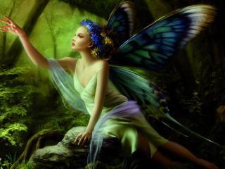 girl, wings, butterfly wallpaper