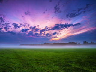 Green Grass And Fogg Under Purple Sky During Sunset wallpaper