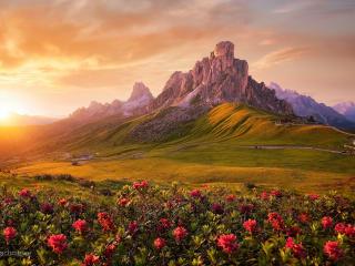 Greeny Landscape Sunrise 2021 wallpaper