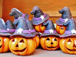 halloween, pumpkin, hat wallpaper
