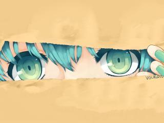 hatsune miku, vocaloid, girl wallpaper