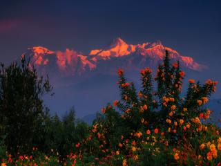 Himalayas Mountains Nepal Region wallpaper