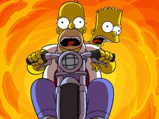 Homer Simpson and Bart Simpson wallpaper