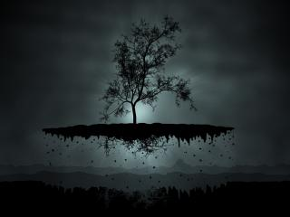 island, tree, shadow wallpaper