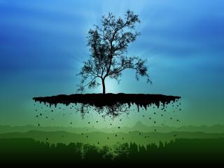 island, tree, silhouettes wallpaper