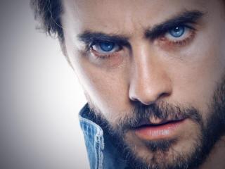 Jared Leto Blue Eye Images wallpaper