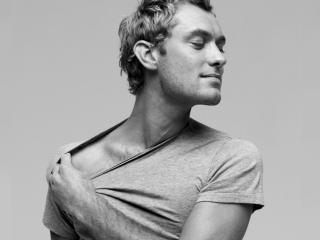 Jude Law T-Shirt Images wallpaper