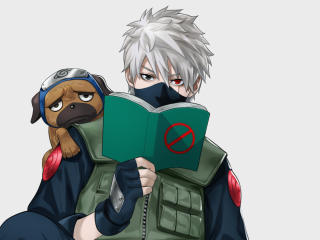 Kakashi Hatake and Pakkun wallpaper
