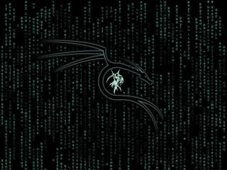 Kali Linux Matrix wallpaper