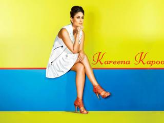 Kareena Kapoor 2014  wallpaper