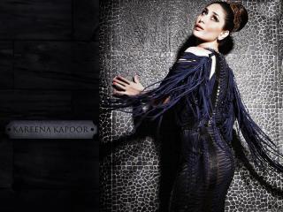 Kareena Kapoor Hd Pic  wallpaper