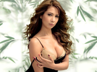Kim Sharma In Black Sexy  wallpaper