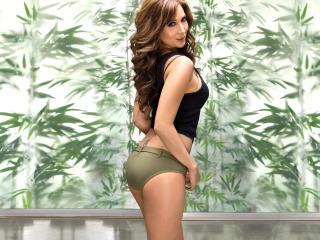 Kim Sharma Sexy Legs wallpaper wallpaper