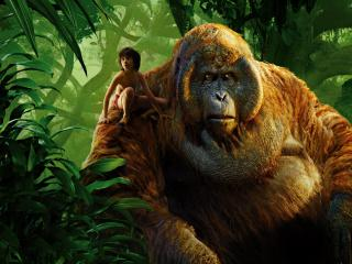 King Louie & Mowgli Jungle Book wallpaper
