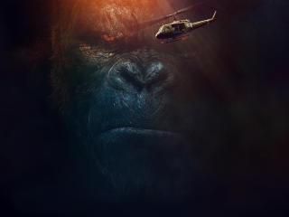 Kong Skull Island 2017 Movie wallpaper