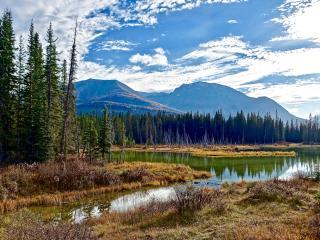 lake, mountains, trees wallpaper