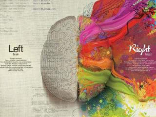 Left & Right Brain HD Cool wallpaper