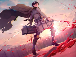 HD Wallpaper | Background Image Levi Ackerman