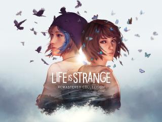Life is Strange Remastered 2021 wallpaper