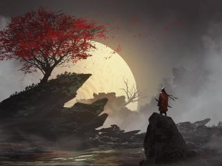 Lone Samurai wallpaper