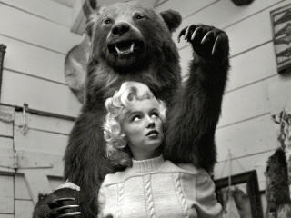 HD Wallpaper | Background Image Marilyn Monroe With Bear