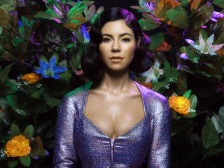 HD Wallpaper | Background Image Marina And The Diamonds