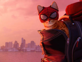 Miles Morales Cat wallpaper
