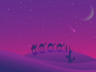 Minimalist Desert Night Camel Walking wallpaper
