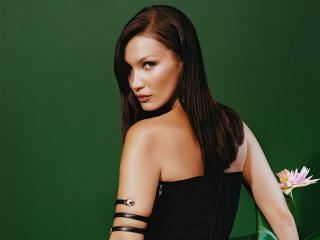 Model Bella Hadid 2020 wallpaper