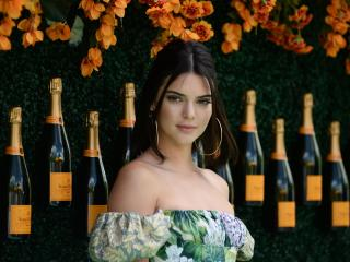 Model Kendall Jenner wallpaper