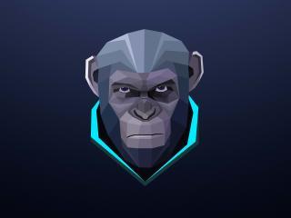 Monkey Minimalism wallpaper