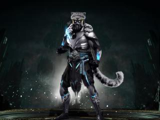 Mortal Kombat 11 Character Digital wallpaper